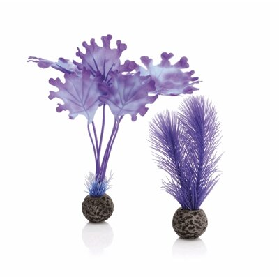 biOrb Purple Kelp Set 20 cm