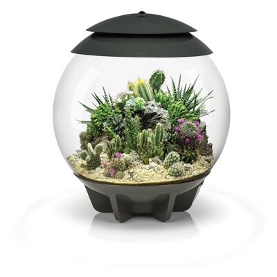 BiOrb Air 30 Terrarium - šedé