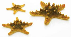biOrb Sea Stars Set žlutá 10, 8 a 5 cm